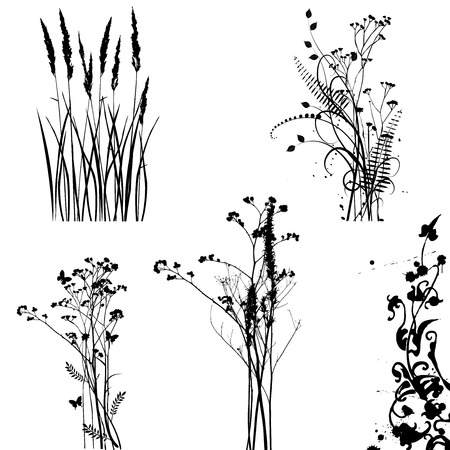 plants, collection for designers - vector Vector