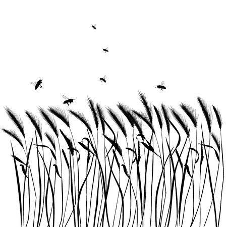 Set of vector grass silhouettes backgrounds for design use Stock Vector - 5002724
