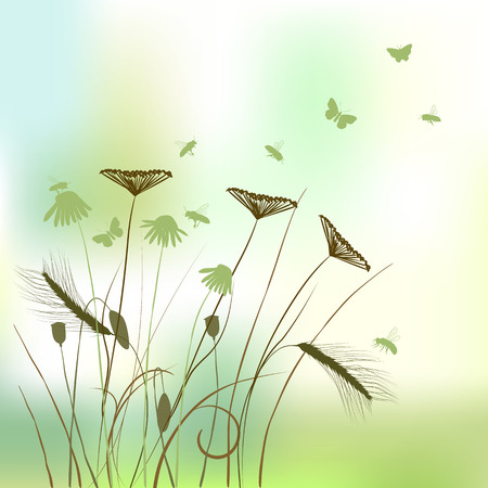 canne: silhouette erba vera - estate di sfondo