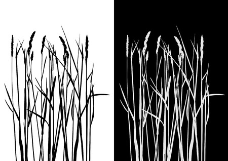 Set of vector grass silhouettes backgrounds for design use Stock Vector - 5367737