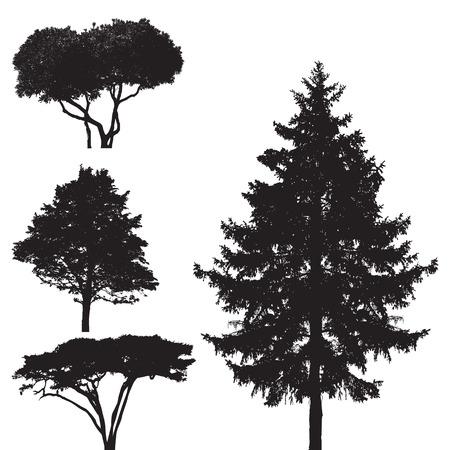 plats: trees -  Illustration