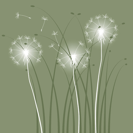 ostrożeń: abstrakcyjna tła z dandelions Ilustracja
