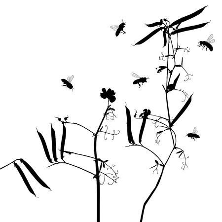 bee garden: fondos de siluetas de hierba para uso de dise�o de vectores