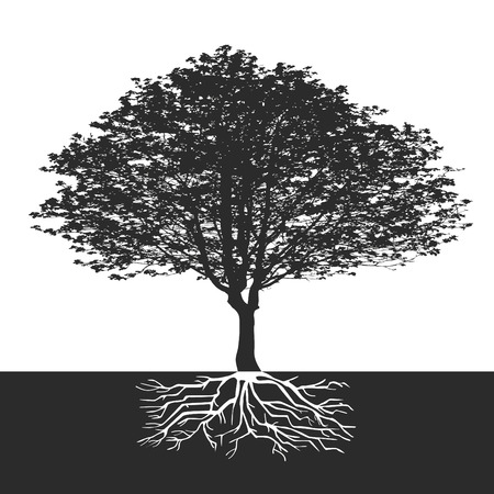 abstract tree with flowers and space for a text Vector