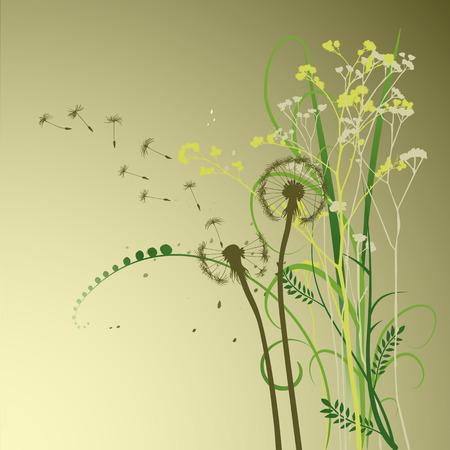 ostrożeń: kwiatowy t?o, mniszek lekarski