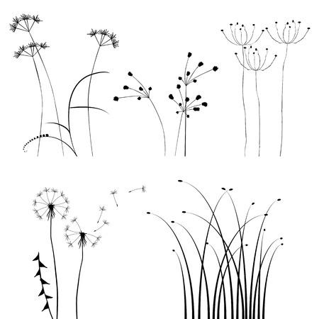 distel: f�r Designer, Pflanze-Auflistung