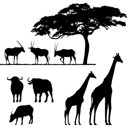 jirafa: Animales africanos, vector siluetas