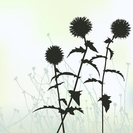 floral background, dandelion Stock Vector - 9707214