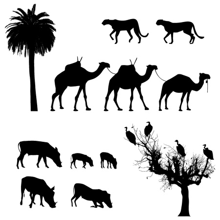 sunset tree: African animals,  silhouettes