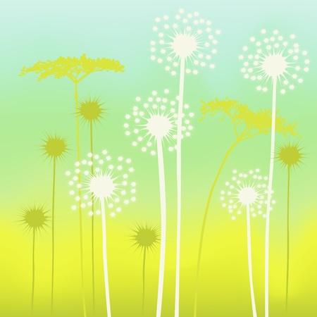sow: floral background, dandelion