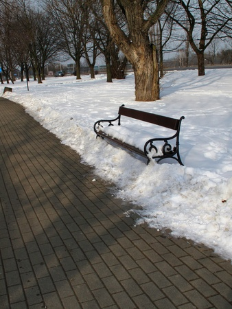 Winter in the park, bench under snow. photo