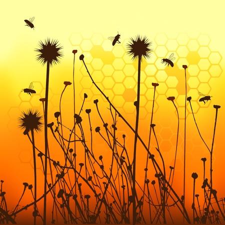 bee garden: siluetas vectoriales de hierba antecedentes y las abejas