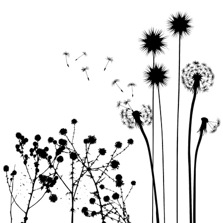 nature image: collection, for designers, plant vector Illustration