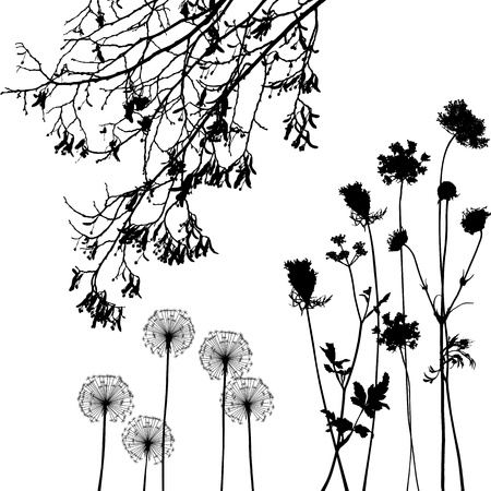 collection, for designers, plant vector Ilustracja