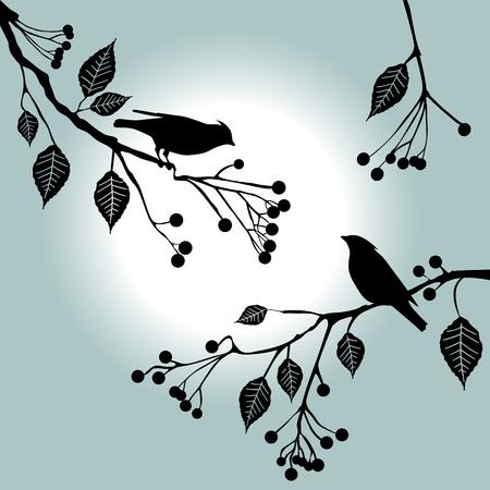 枝に鳥。夏の日 - 2d
