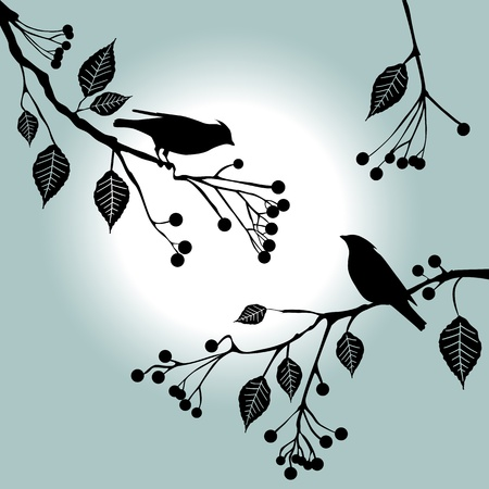 �rboles con pajaros: Los p�jaros en la rama. Los d�as de verano - 2D
