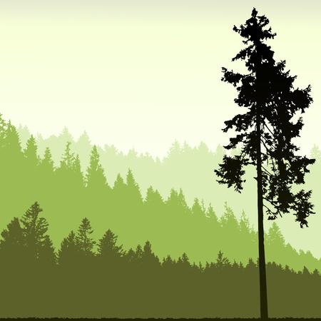 arbol de pino: Árbol silueta sobre un fondo abstracto Vectores