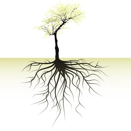 apfelbaum: blühenden Baum mit einem Platz für einen Text Illustration