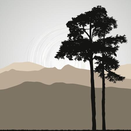 arbol de pino: �rbol silueta sobre un fondo abstracto Vectores