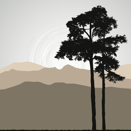 pine tree silhouette: Tree silhouette on an abstract background