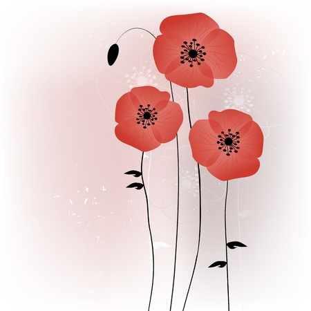red poppy: Beautiful poppies background illustration  Illustration
