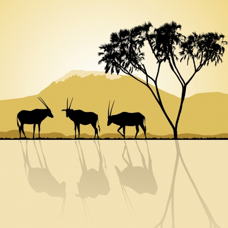 African landscape flora and fauna in sunset time with antelopes. Vector