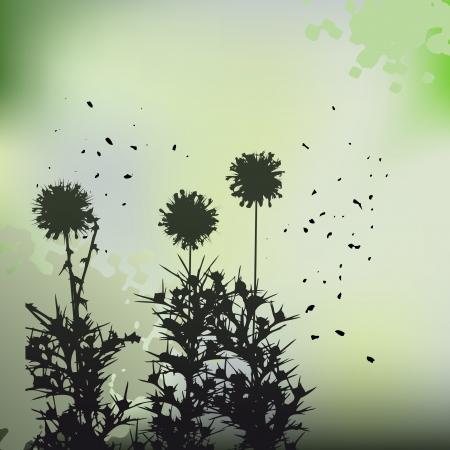 floral background, dandelion Stock Vector - 14004491