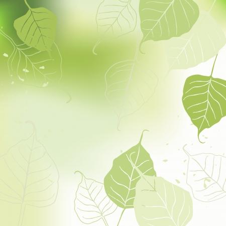 Leaves, spring  イラスト・ベクター素材