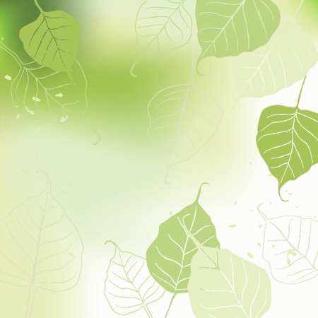 green leafs: Leaves, spring Illustration