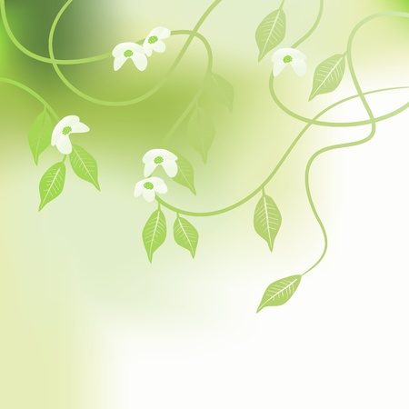 green flower: Leaves, spring - vector background