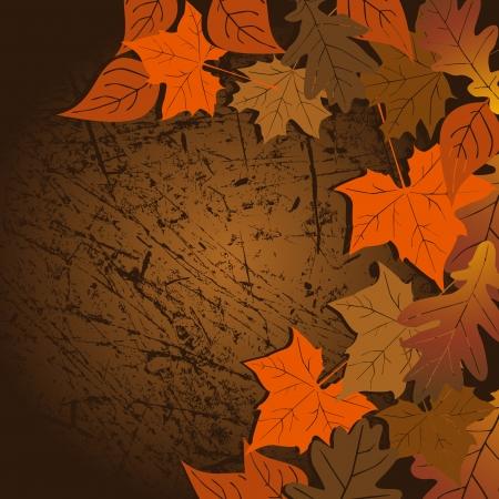 revival: Leaf, autumn - vector background