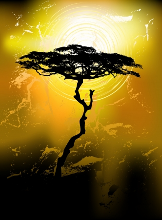 acacia: Tree silhouette on an abstract background