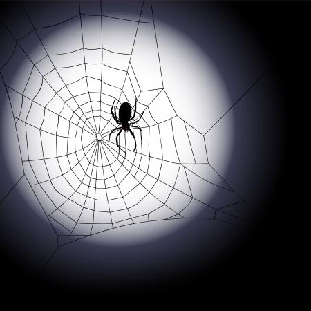 springe: Halloween background - Vector illustration of spiders web