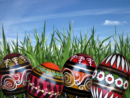 Easter eggs on the green grass background under blue sky with sun  Stock Photo - 17621019
