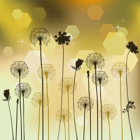 Floral background with dandelion Vector