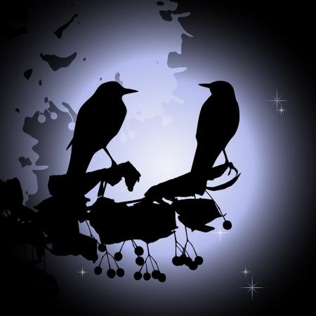 Birds on the branch  Summer night - 2d vector Stock Vector - 18429878