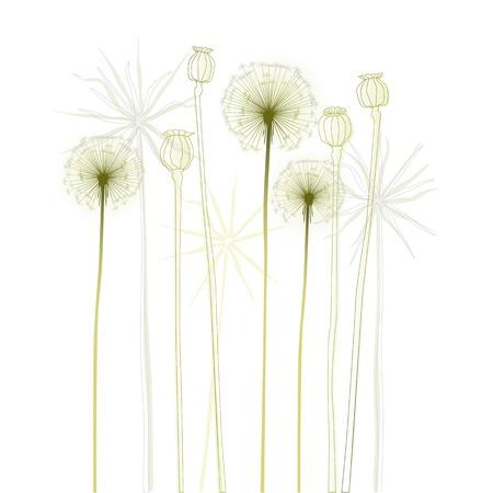 Floral background, dandelion  The meadow in summertime - 2d Illustration