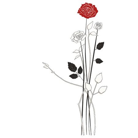 Floral background roses Illustration