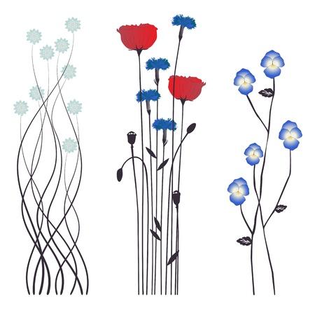 fiordaliso: Floral background, fiori che sbocciano Vettoriali