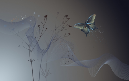 Desktop wallpaper - background with a butterfly - graphics Vector