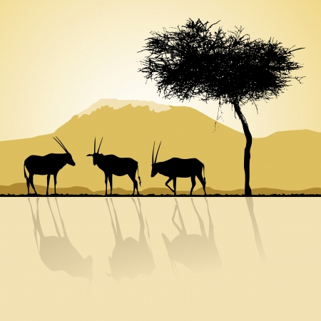 African landscape flora and fauna in sunset time with antelopes  Vector