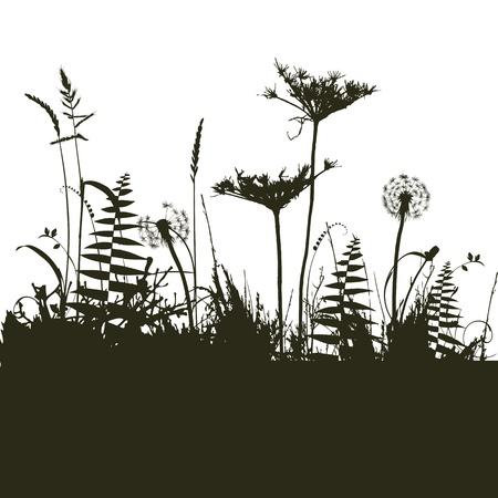 デザイナーは、植物のコレクション