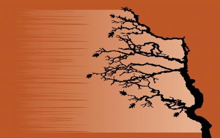 moody sky: L'albero si piega dal vento