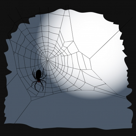 ghouls: Halloween background - cobweb with spider Illustration