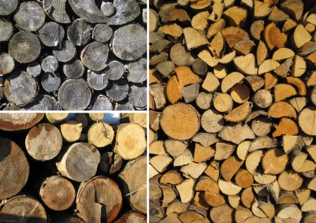 Set of three wood textures  photo