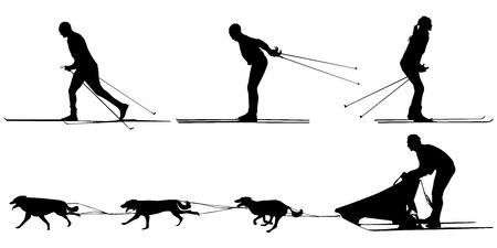 cross country skiers, sled and team of dogs