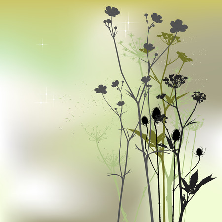 floral background, dandelion Vector