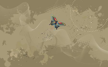 desktop wallpaper: Papel tapiz del escritorio - fondo con la mariposa - gr�ficos vectoriales
