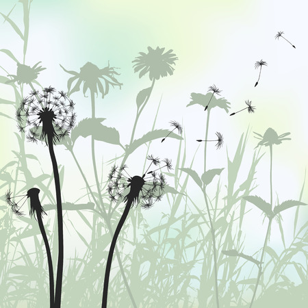 floral background, dandelion 2d vector