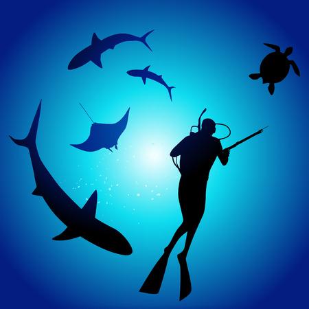 manta: Shark and diver, swimming with sharks